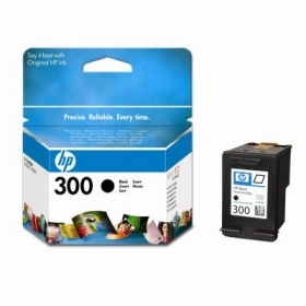 HP CC640EE Black Ink Cartridge (HP 300)