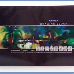 Slikarski blok za crtanje DRAWING BLOCK 135gr 20l B4, Campap